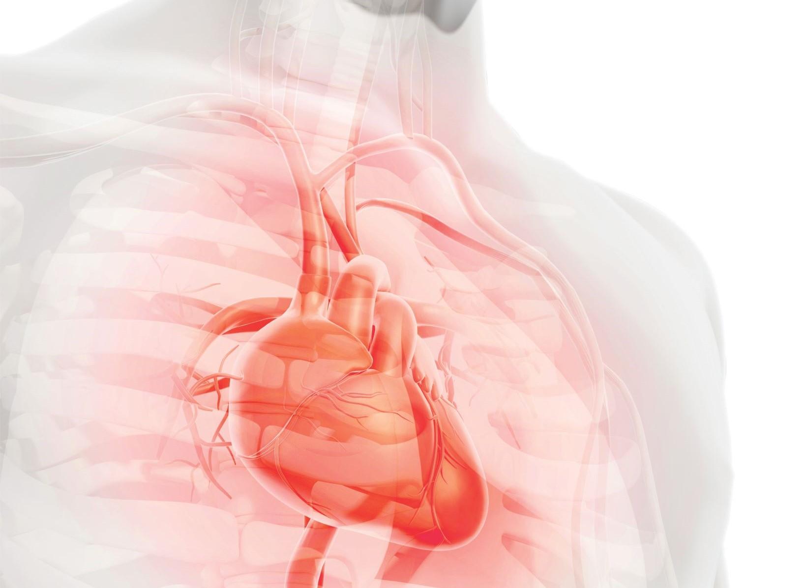 Jak ochránit své srdce