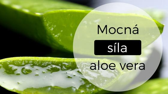 Aloe vera: Vitamínová bomba pro vlasy i pokožku hlavy