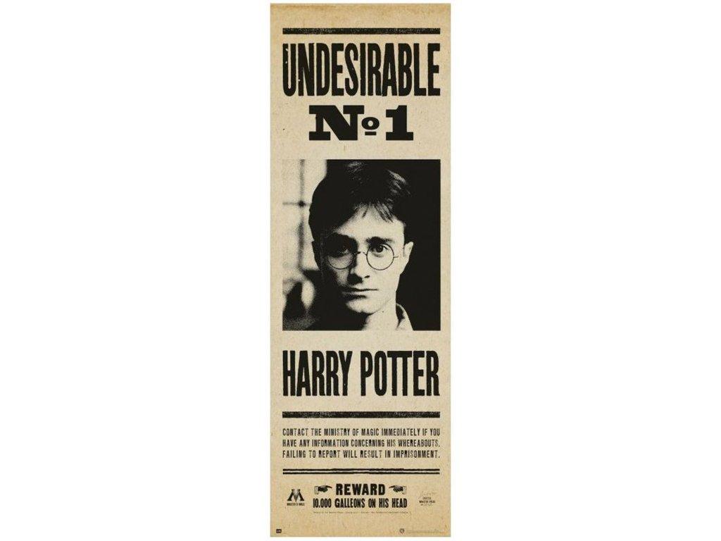 PLAKÁT 53 x 158 cm|HARRY POTTER  INDESEABLE No.1|DOOR POSTER