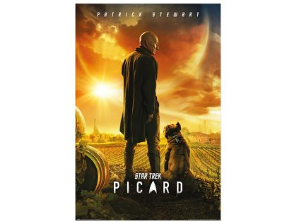 PLAKÁT 61 x 91,5 cm/STAR TREK  PICARD NUMBER ONE