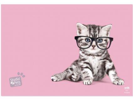 PODLOŽKA NA STŮL|STUDIO PETS  CAT|49,5 x 34,5 cm