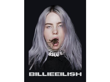 OBRAZ NA PLÁTNĚ CANVAS|30 x 40 cm  BILLIE EILISH|SPIDER