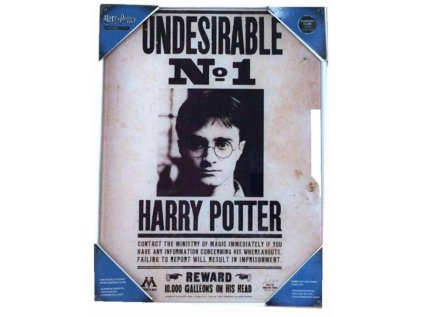 OBRAZ NA SKLE 30 x 40 cm  HARRY POTTER|UNDESIRABLE NO.1