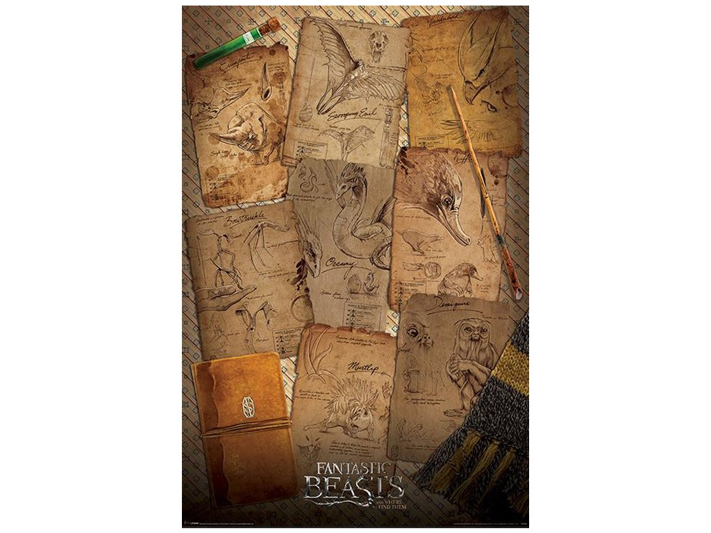 PLAKÁT 61 x 91,5 cm|FANTASTIC BEAST  NOTEBOOK PAGES|C