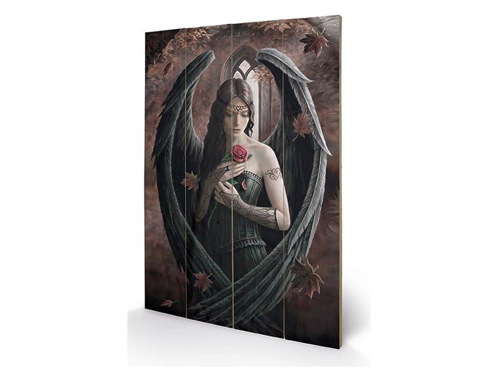 OBRAZ|MALBA NA DŘEVĚ 40 cm x 59 cm  ANNE STOKES|ANGEL ROSE