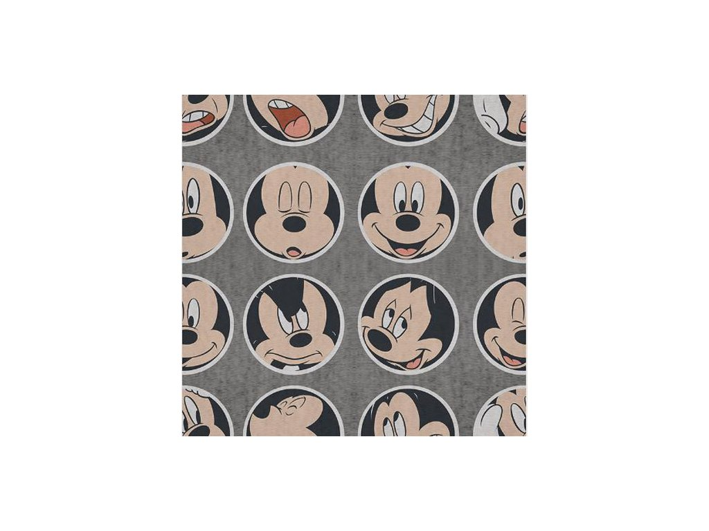 OBRAZ NA PLÁTNĚ CANVAS|40 x 40 cm  MICKEY MOUSE|CIRCLED