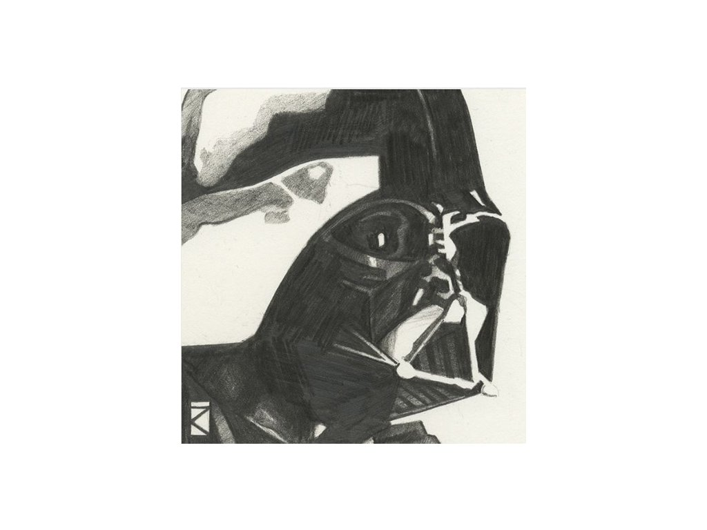 OBRAZ NA PLÁTNĚ CANVAS|30 x 30 cm  STAR WARS|DARTH VADER SKETCH