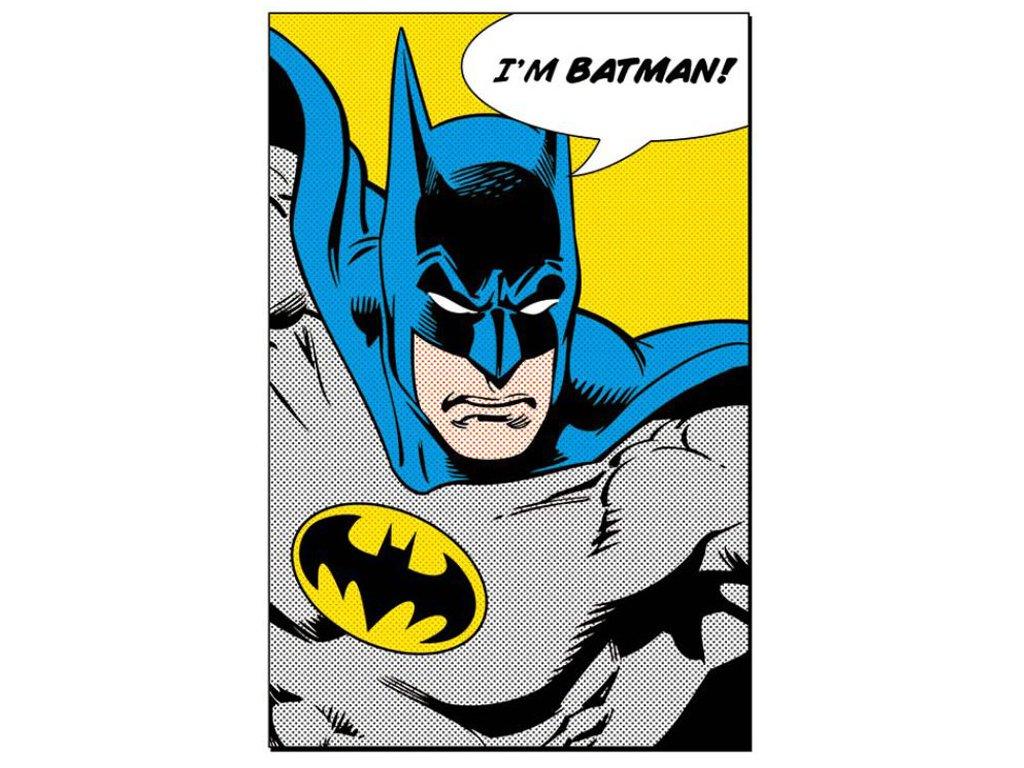 PLAKÁT 61 x 91,5 cm|DC COMICS  I'M BATMAN