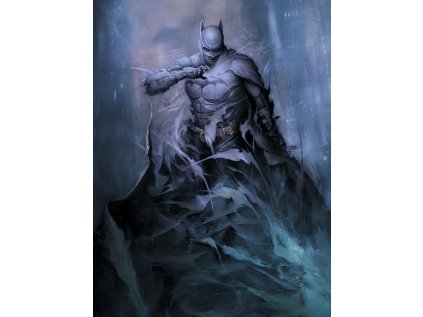 OBRAZ NA PLÁTNĚ CANVAS|60 x 80 cm  DC COMICS|BATMAN|ONE WITH THE NIGHT