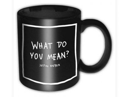 HRNEK KERAMICKÝ|JUSTIN BIEBER  WHAT DO YOU MEAN|320 ml