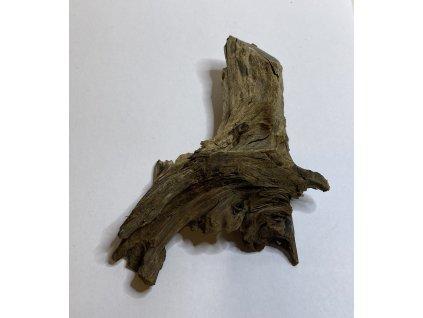 Okrasné kořeny