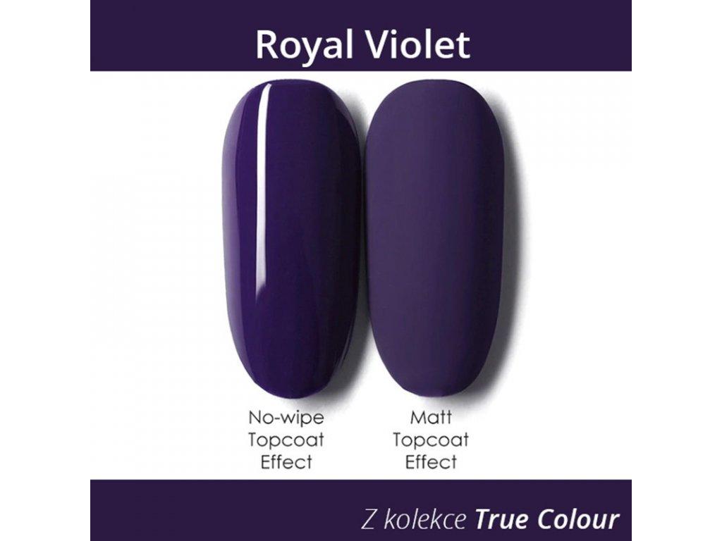 631 gdcoco uv gel true color royal violet 8 ml