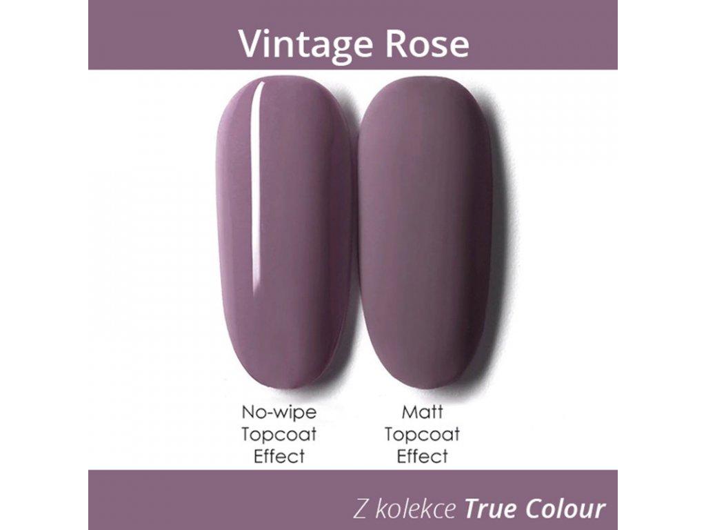 670 gdcoco uv gel true color vintage rose 8 ml