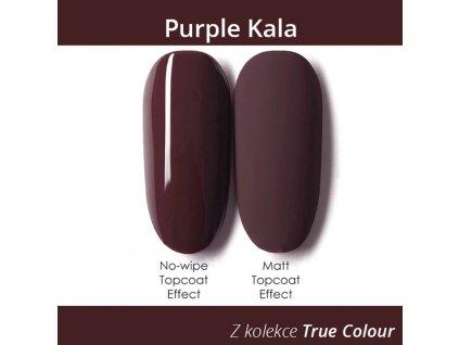 685 gdcoco uv gel true color purple kala 8 ml