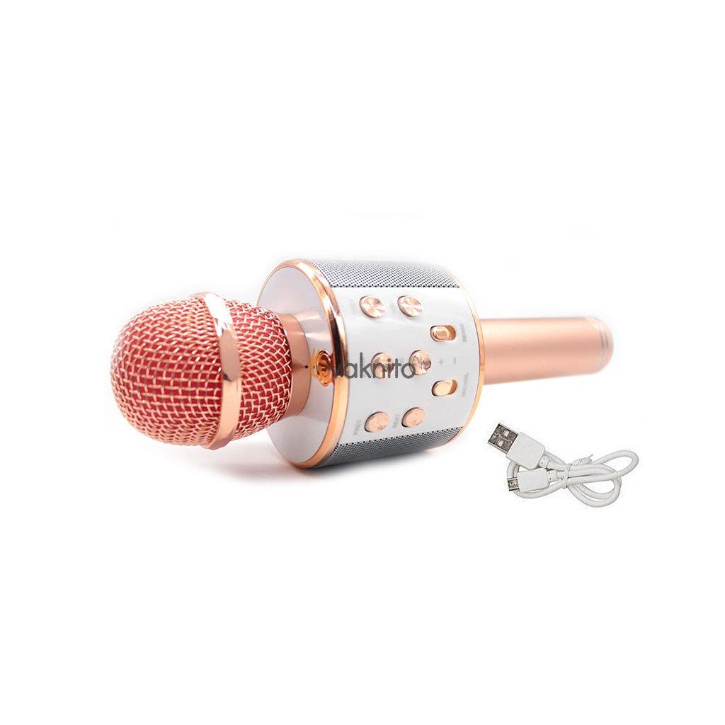 Karaoke mikrofón s Bluetooth a reproduktorom LineComp Q9
