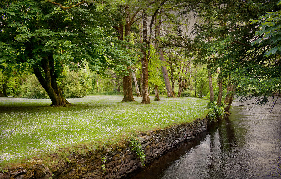 peaceful-ireland-landscape-cheryl-davis