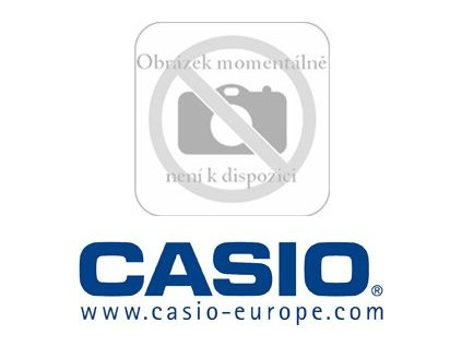 DT 788 RSC(KABEL RS485) CASIO