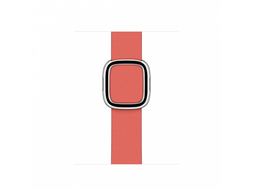 Apple Watch 40mm Band: Pink Citrus Modern Buckle - Medium (DEMO) (Seasonal Fall 2020)