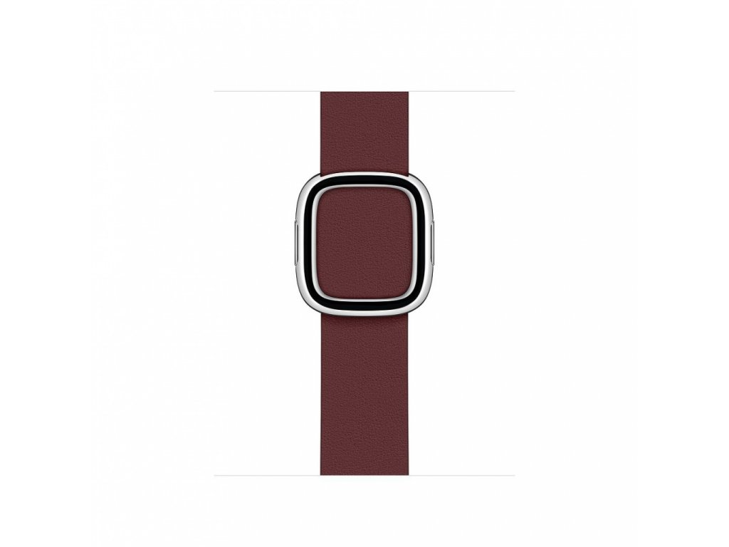 Apple Watch 40mm Band: Garnet Modern Buckle - Large (Seasonal Fall 2020)