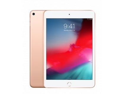 Apple iPad mini 5 Wi-Fi 64GB - Gold (DEMO)