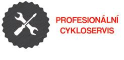 Profesionální cykloservis