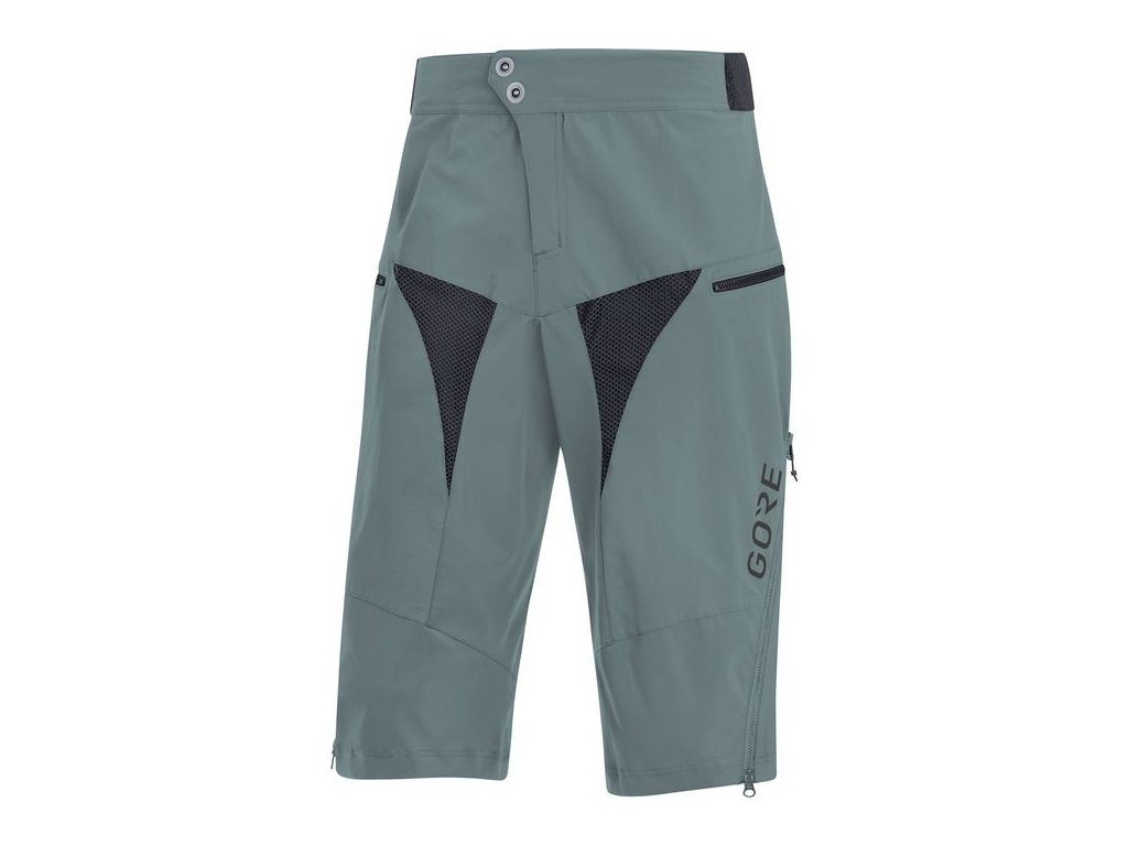 GORE C5 All Mountain Shorts-nordic-L
