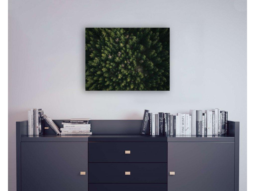 Forbbiden forest 80x60