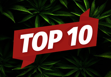 TOP 10 přínosů z CBD