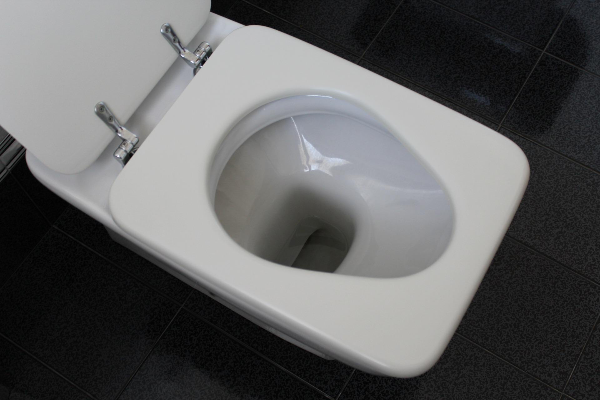toaleta_1