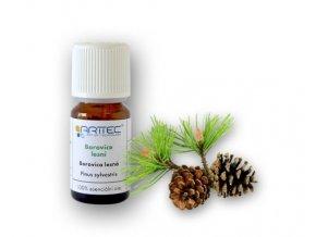 Borovice lesní (Pinus sylvestris), Borovica lesná