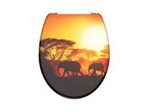 WC prkénko Duroplast Soft Close Africa 82360 | Eis