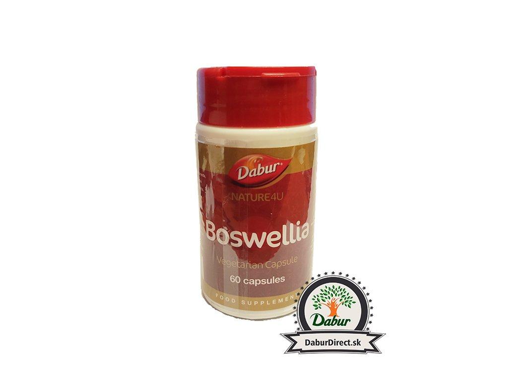 Boswellia Caps 1024x768