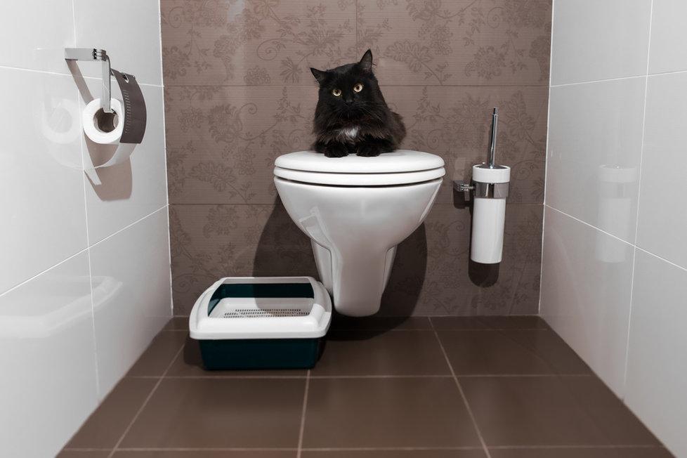 Toaletní potřeby
