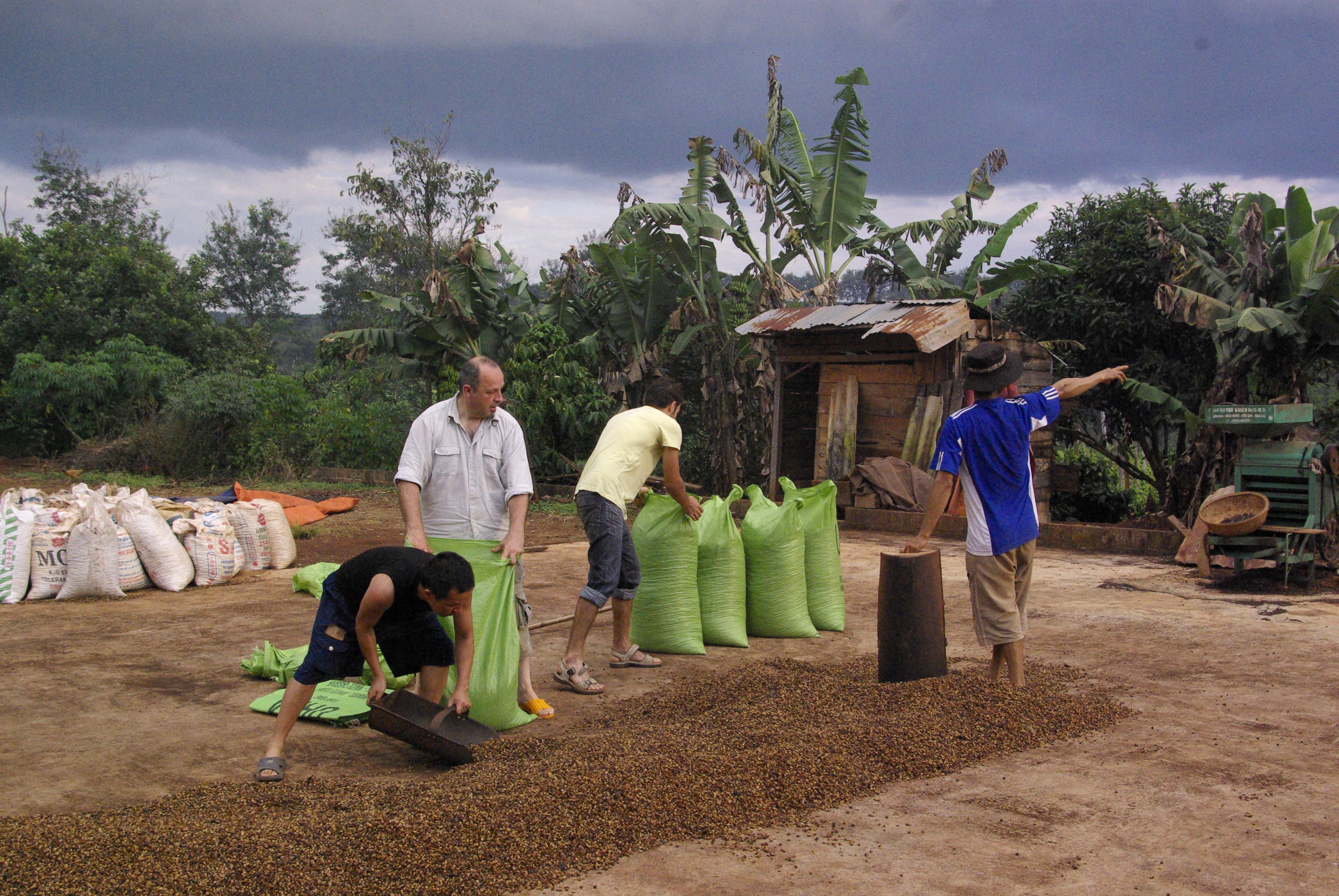 Odkud dovážíme naši kávu?