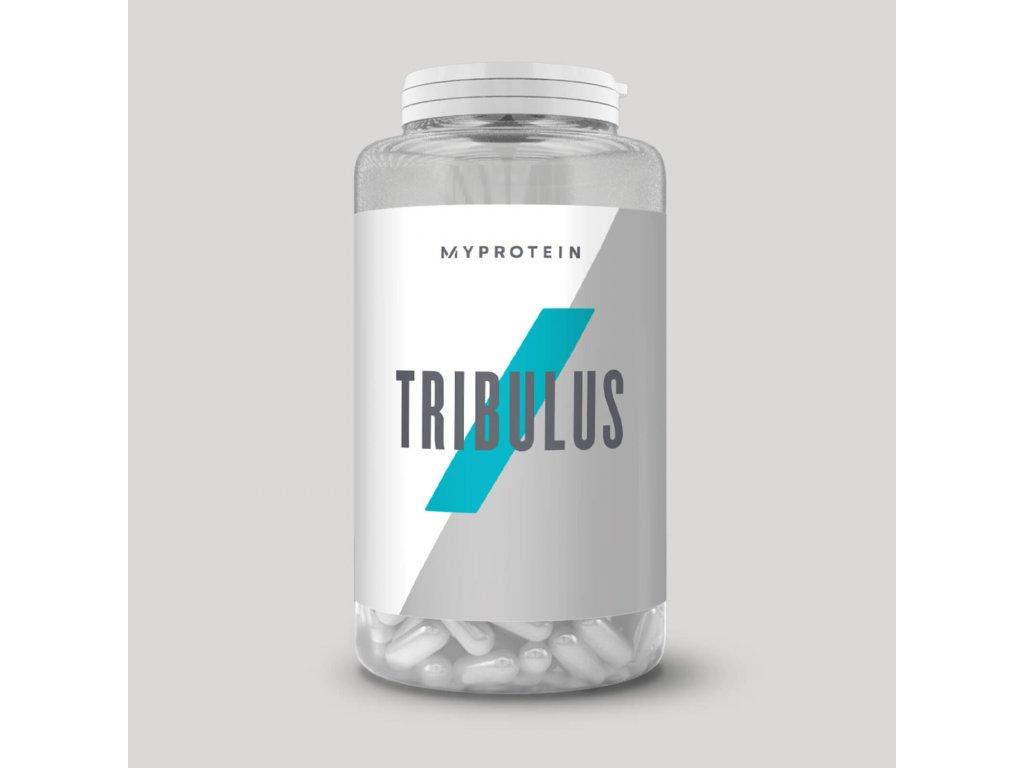 mp tribu