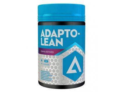 adapt lean