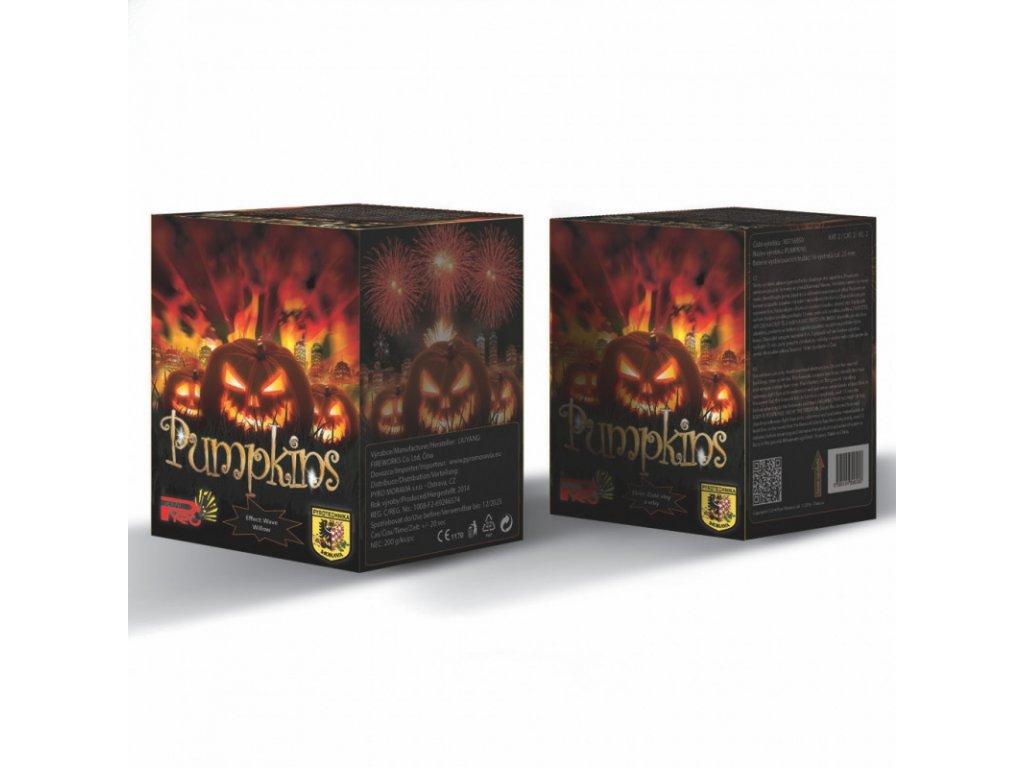 NS116050 pumpkins v