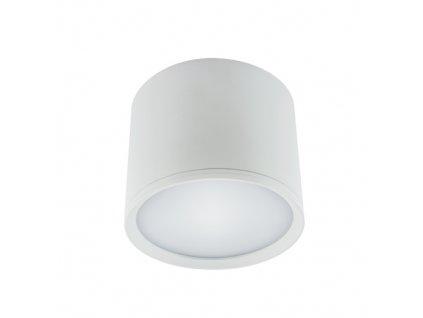 Downlight ROLEN LED 10W bílá