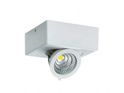 Bodové svítidlo IGOR LED D 6W 500lm 4000K IP20 45° bílá