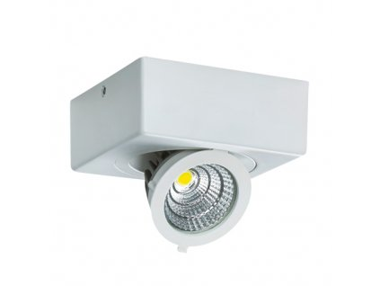 Bodové svítidlo IGOR LED D 9W 750lm 4000K IP20 65° bílá