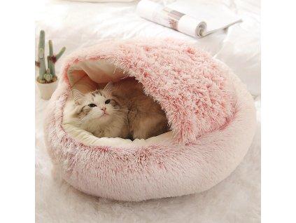kocici postel