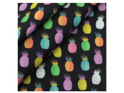 latky ananas barevny