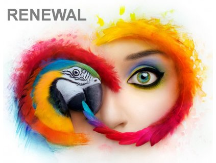Adobe CC All Apps MP ENG EDU ENT RENEWAL K-12 SCHOOL SITE LICENSE (500+) L-4 100+ (12 měsíců) Named