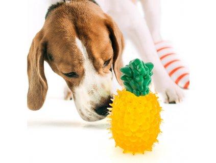 Hračky pre psy Fruits