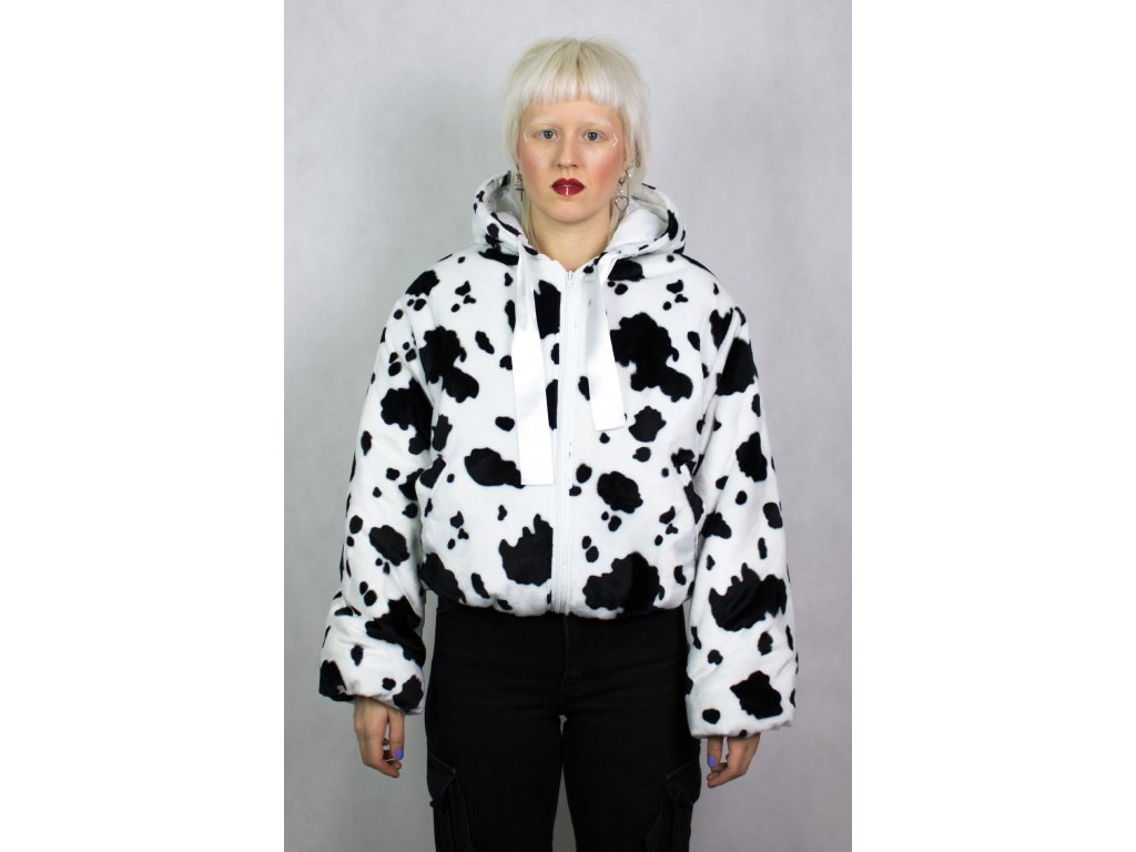 cow front