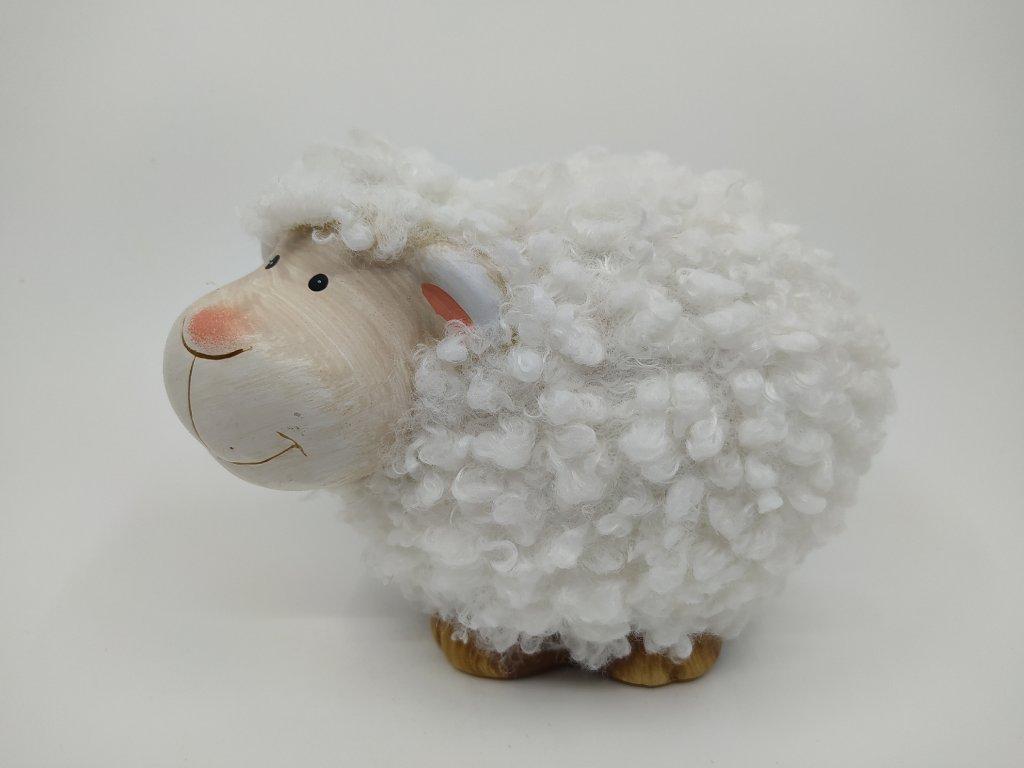 ovce c3