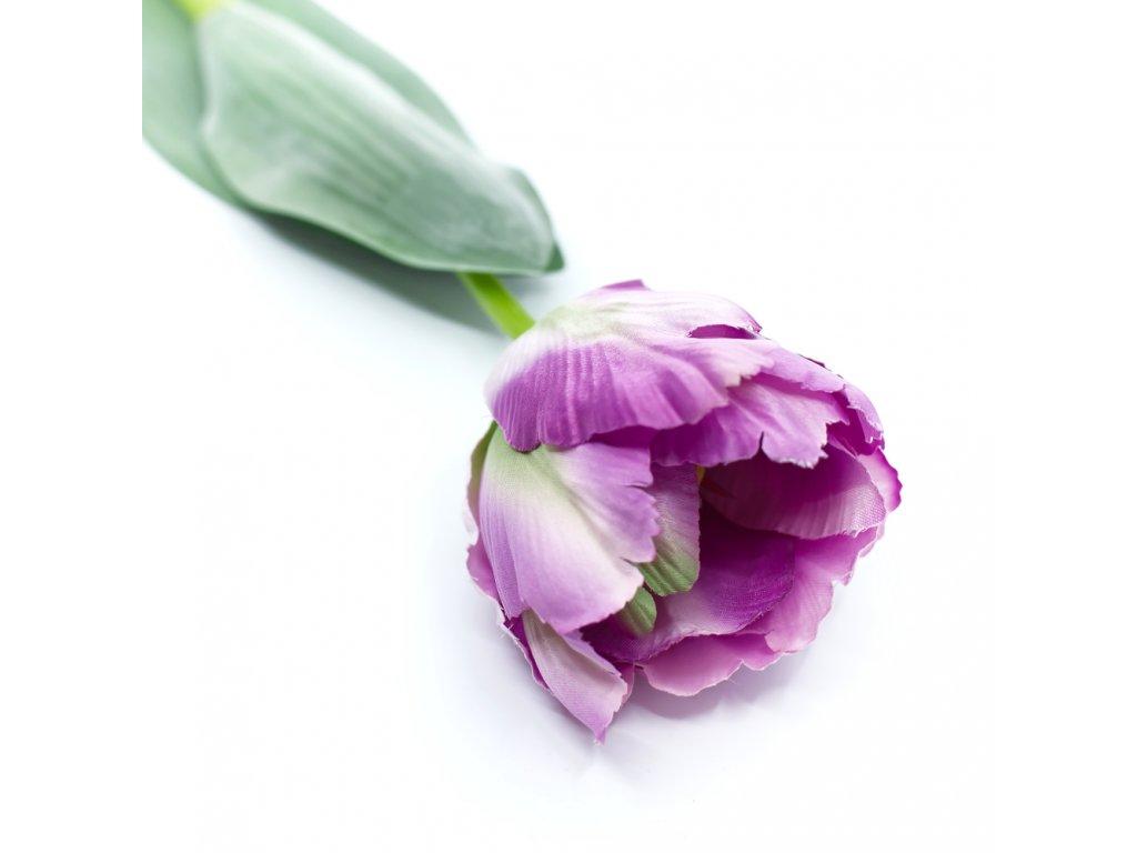 tulipan kytice