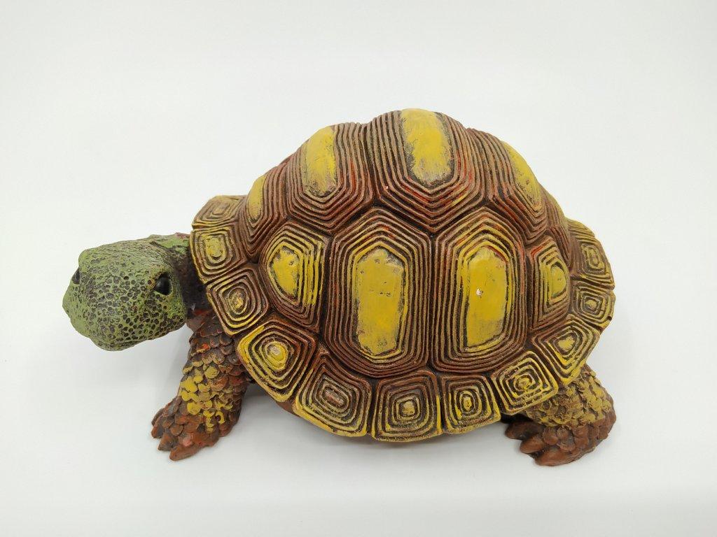 zelva1