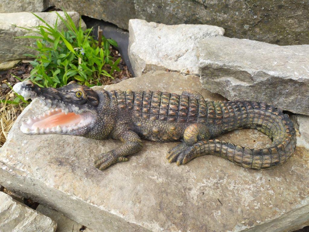 krokodyl
