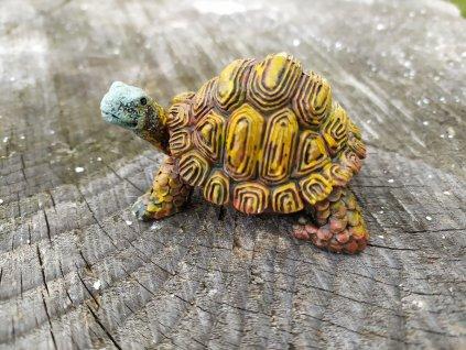 Želva mini